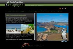IT - Website