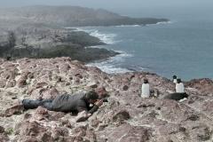 Drollige Rockhopper(Felsenpinguine), Patagonien. Foto & Copyright by Hansruedi Rüfenacht