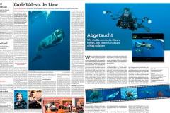 Interview im Darmstädter Echo & Lebenslust