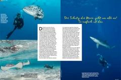 CHICO – Unsere Ozeane – Bilderstrecke