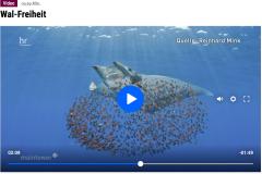 HR3-Maintower - Wal Freiheit