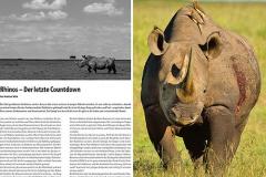 NATURBLICK – Nashorn Wilderei, Bilder & Text