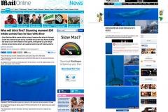 Daily Mail und mehr als 50mal weltweit
