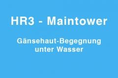 tv-maintower
