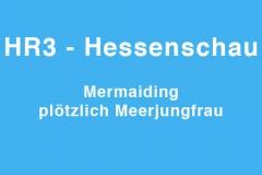 tv.hessenschau-mm
