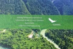 Wilderness International - Wildnis hautnah