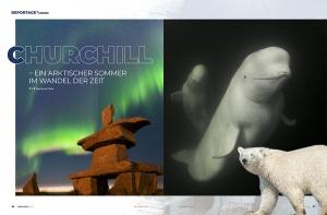 Churchill Kanada - diverse Reportagen