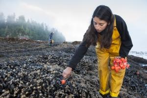 Wilderness International Aufragsreportage - Das Bamfield Marine Science Center
